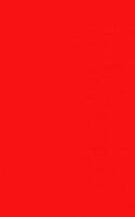 Startnummernuntergrund rot 100 x 35 cm